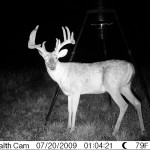 Oklahoma Trophy White Tail Buck - 2009