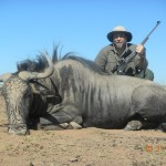 Namibia Trophy Hunt - Blue Wildebeest
