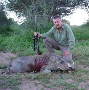 Namibia Hunting Trophy - Warthog