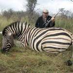 Namibia Trophy Hunt - Zebra