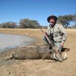 Namibia Trophy Hunt - Warthog